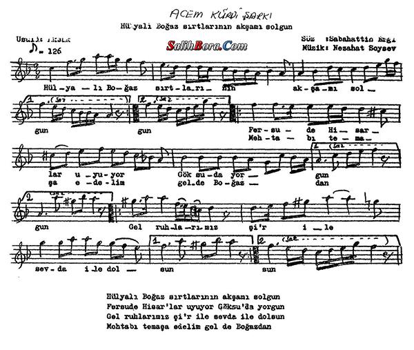 Hülyalı Boğaz sırtlarının akşamı solgun notası - 2
